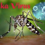 virus-zika-1500-696x464